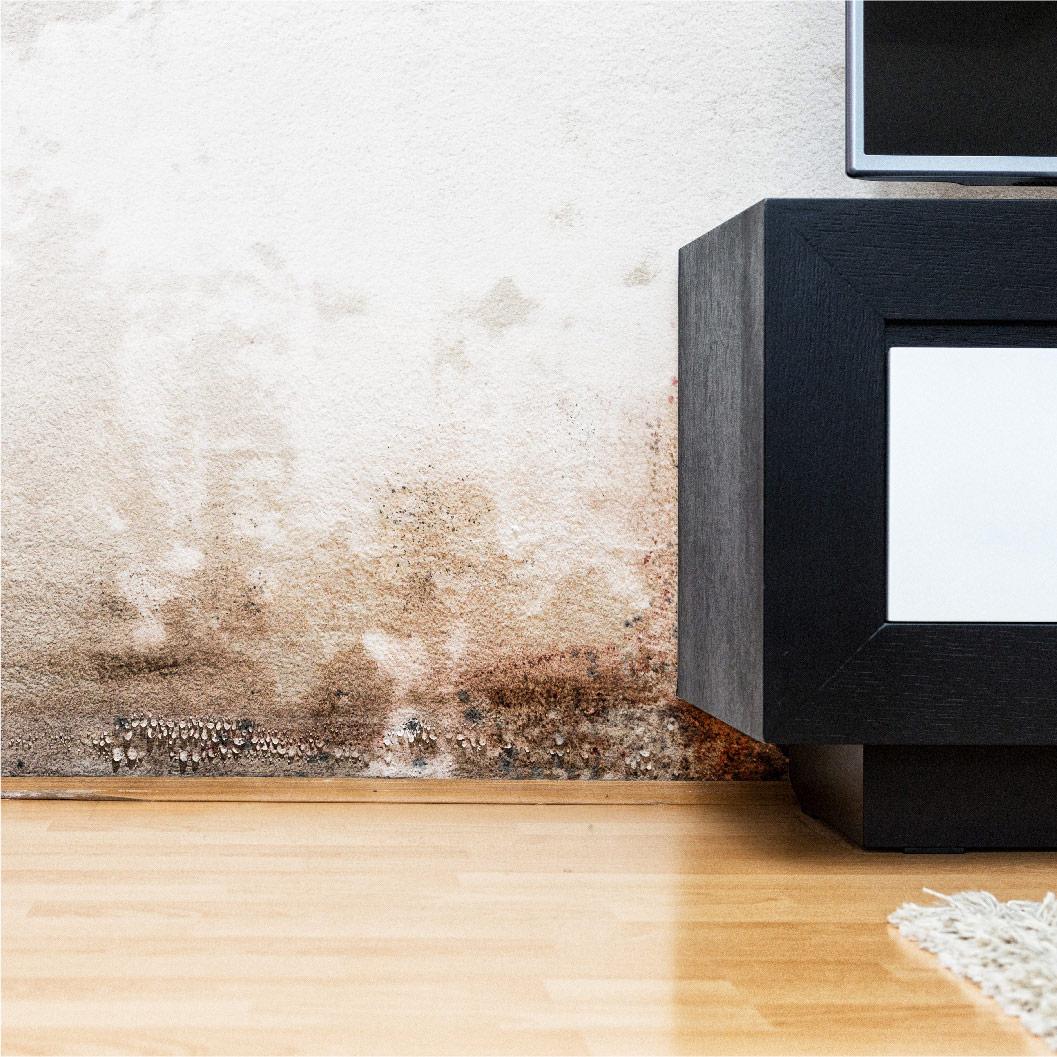 Un mur avec des traces d'humidité