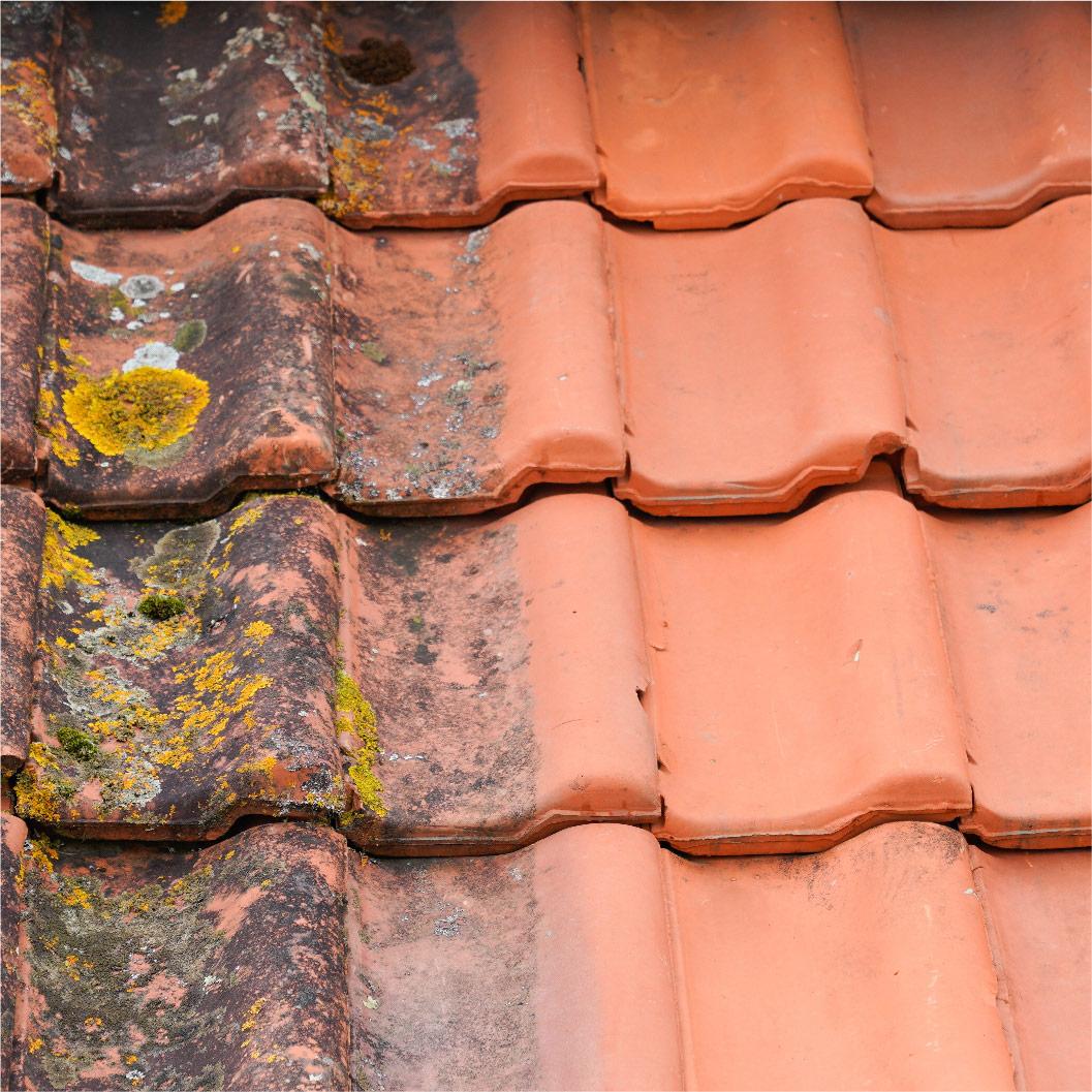 Avant après rénovation toiture par nettoyage et démoussage